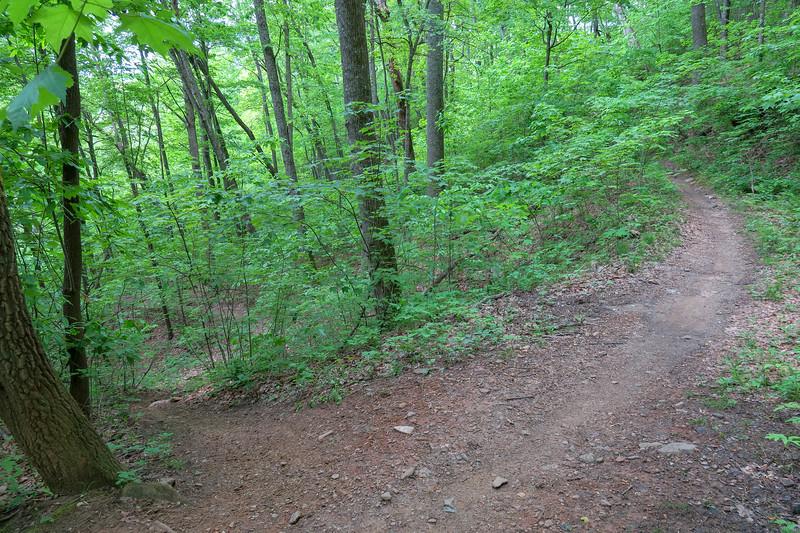 Sidehill Trail -- 2,800'