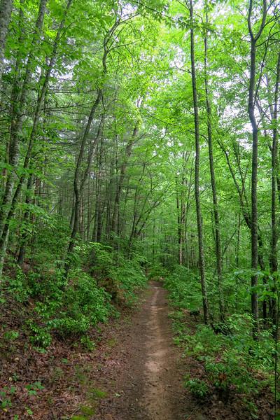 Sleepy Gap Trail -- 2,420'