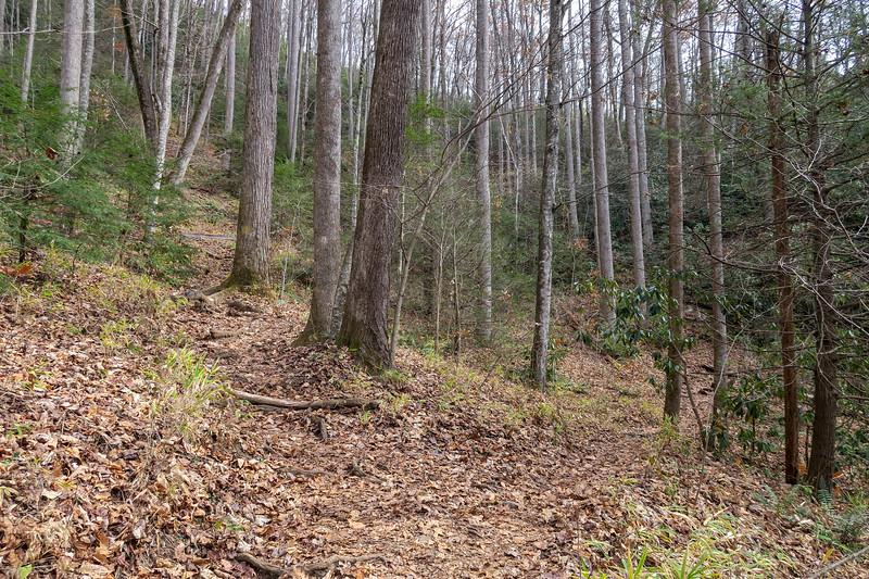 Slick Rock Falls Trail @ Slick Rock Falls -- 2,680'