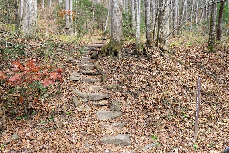 Slick Rock Falls Trailhead (F.R. 475B) -- 2,650'