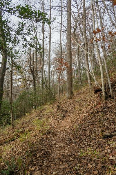 Slick Rock Falls Trail -- 2,700'