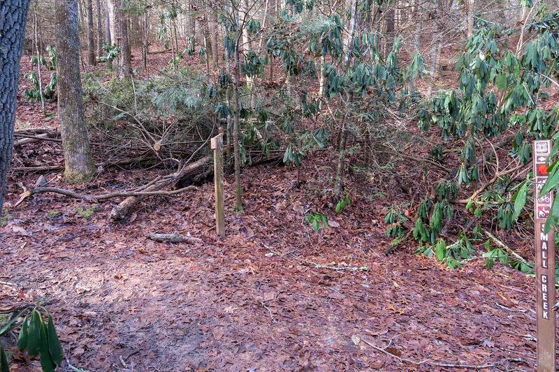 Small Creek/Deerfield Connector/Deerfield Loop Trail Junction -- 2,240'