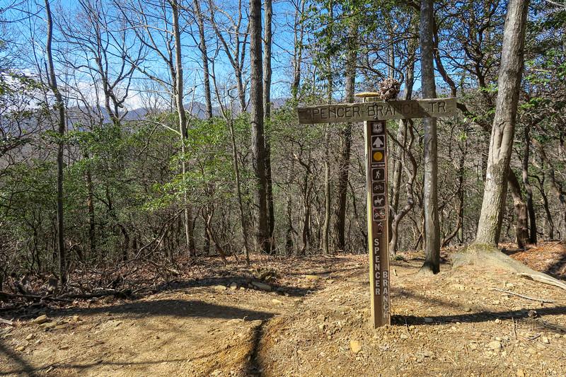 Spencer Branch/Trace Ridge Trail Junction -- 3,320'