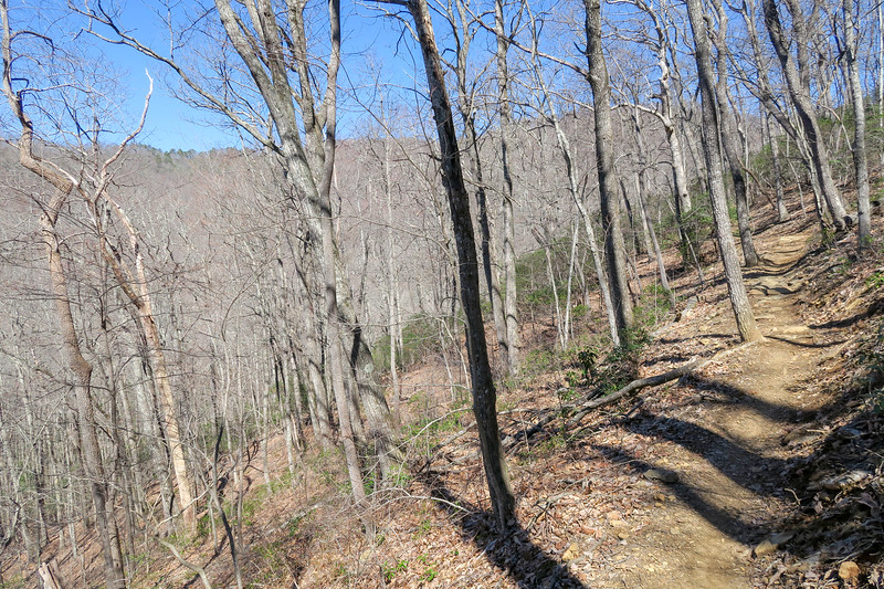 Spencer Branch Trail -- 3,080'