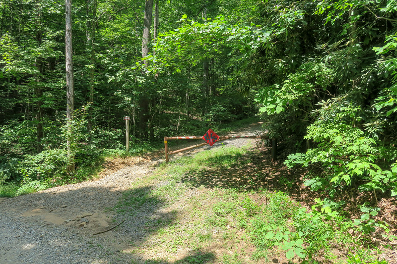 Spencer Gap Trail/F.R. 5000 Junction -- 2,840'