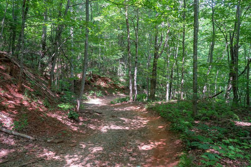 Spencer Gap Trail -- 2,900'
