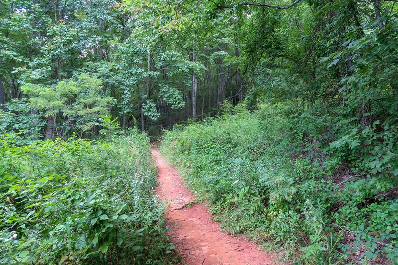Spencer Gap Trail -- 3,000'