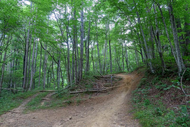Spencer Gap Trail -- 2,980'