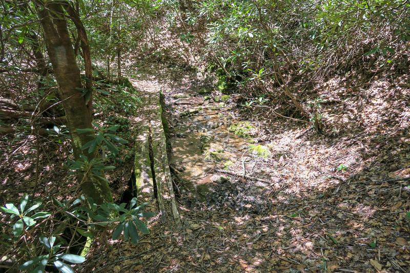 Squirrel Gap Trail -- 2,680'