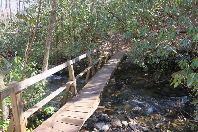 Summey Cove Trail @ Mill Station Creek - 3,380'