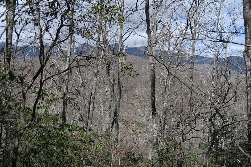 Summey Cove Trail - 3,700'