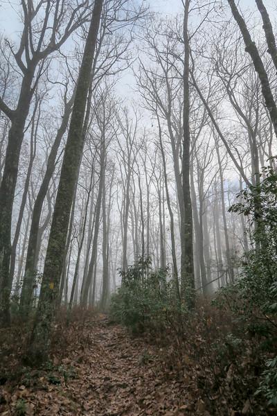 Sunwall Trail -- 3,220'