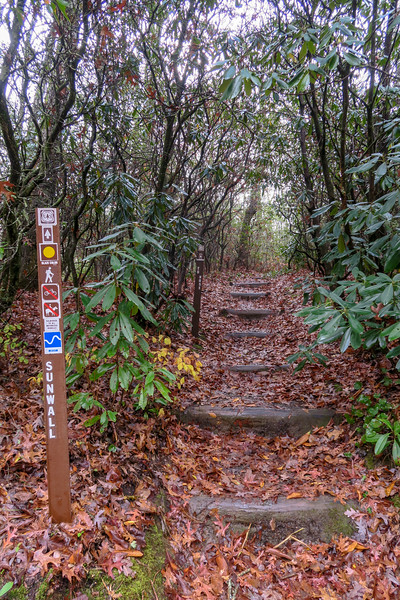Sunwall Trailhead (F.R. 475B) -- 3,100'