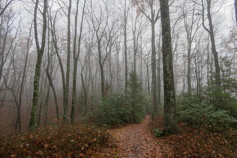 Sunwall Trail -- 3,200'