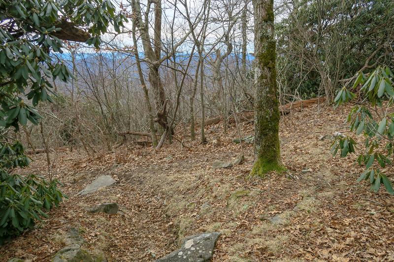 Thompson Creek/Pilot Rock Trail Junction -- 4,980'