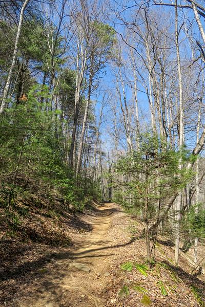 Thrift Cove Trail -- 2,840'