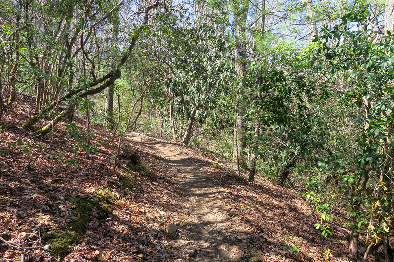 Trace Ridge Trail -- 2,340'