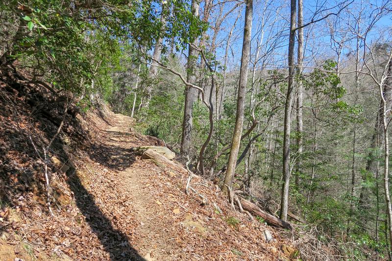 Trace Ridge Trail -- 2,300'