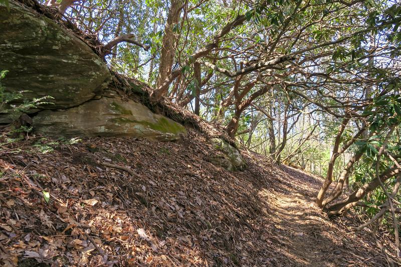 Trace Ridge Trail -- 2,400'