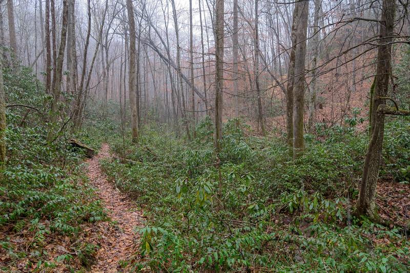 Wagon Road Gap Trail -- 2,620'