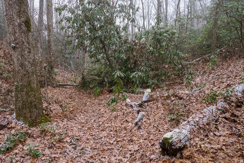 Wagon Road Gap Trail -- 2,950'