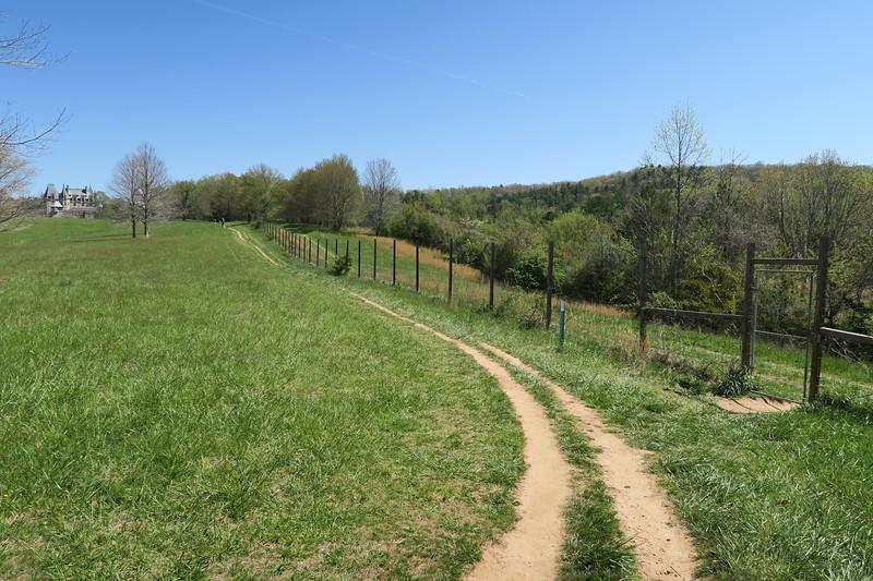 Deer Park-Meadow Trail Junction