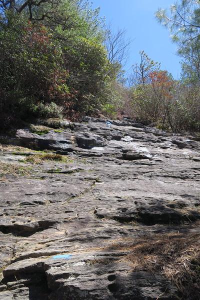 Chimneytop Trail -- 4,200'
