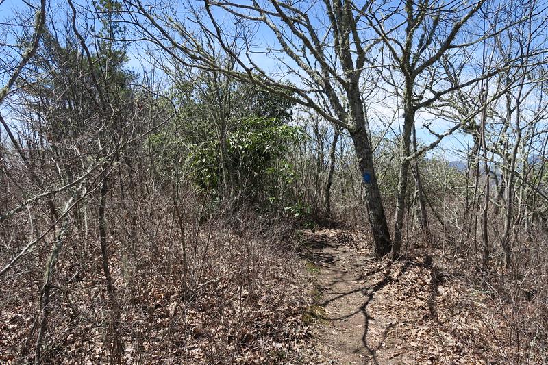 Chimneytop Trail -- 4,610'