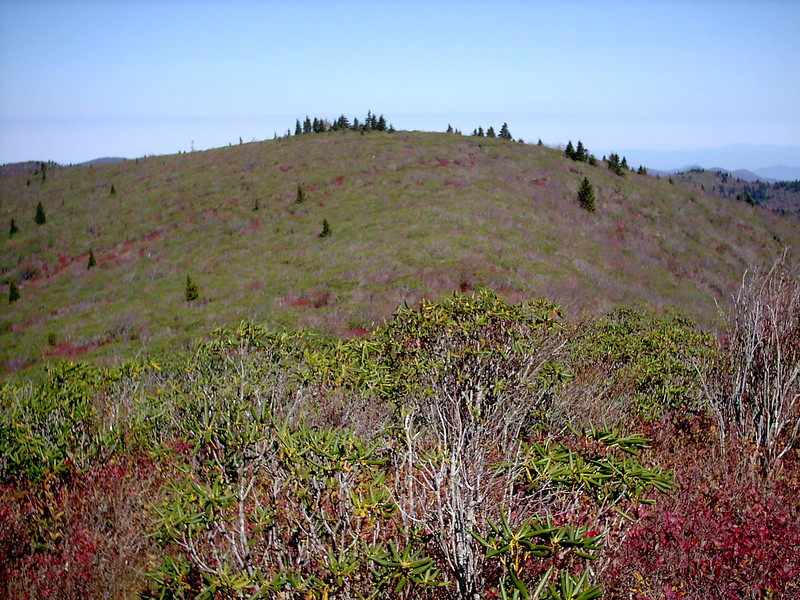 Grassy Cove Summit Spur