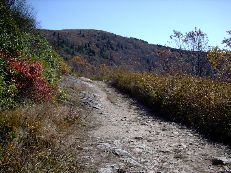 Ivestor Gap Trail