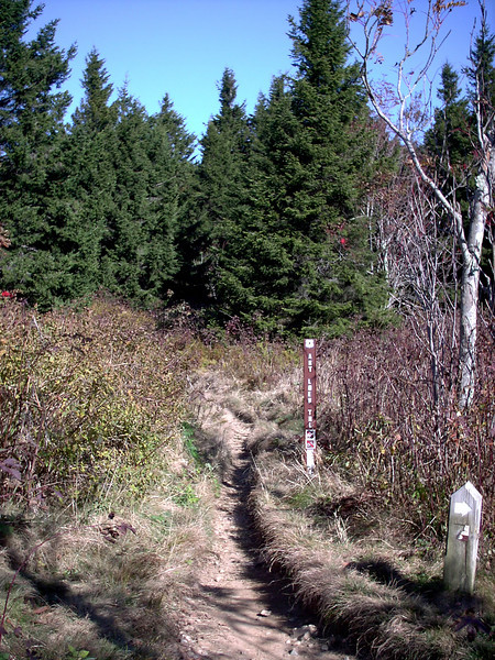 Art Loeb Trail
