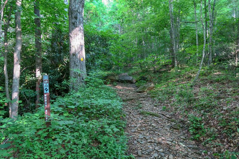 Woody Ridge Trailhead -- 3,160'