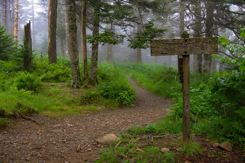 Appalachian-Clingmans Dome Spur Trail Junciton