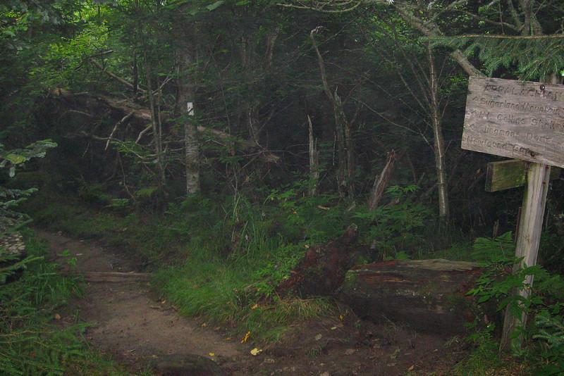 Appalachian-Sugarlands Mountain Trail Junction -- 5,950'