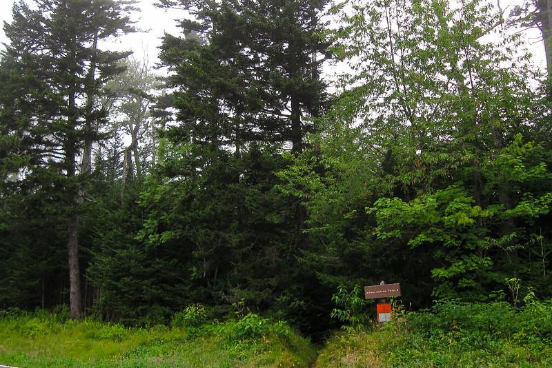 Fork Ridge Trailhead