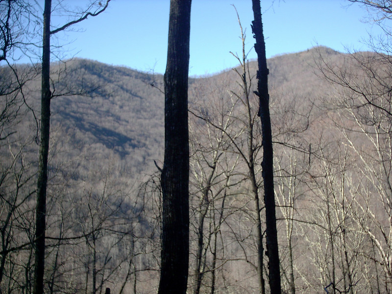 Art Loeb Trail - 3,500'