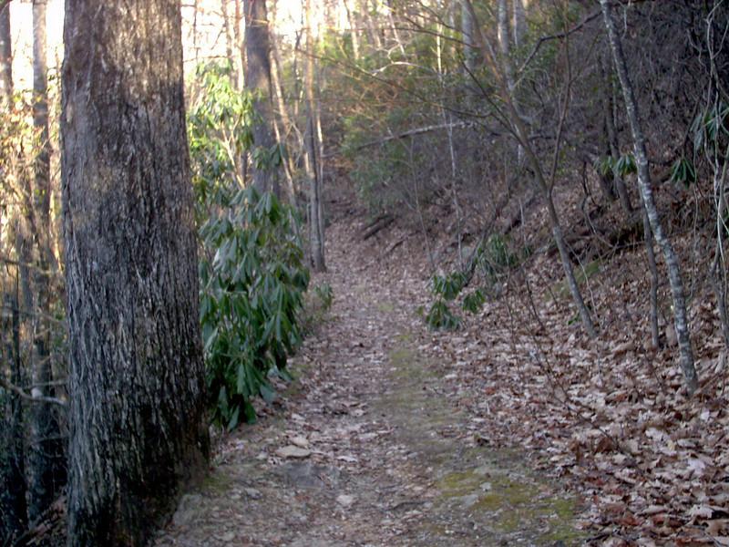 Art Loeb Trail - 3,600'