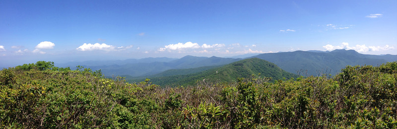 Craggy Dome Summit (6,080')