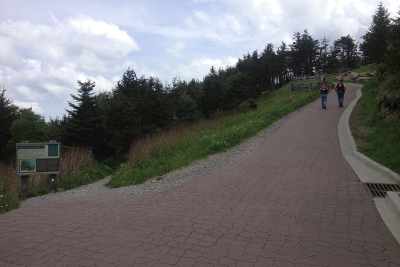 Mount Mitchell Summit Trail (6,650')