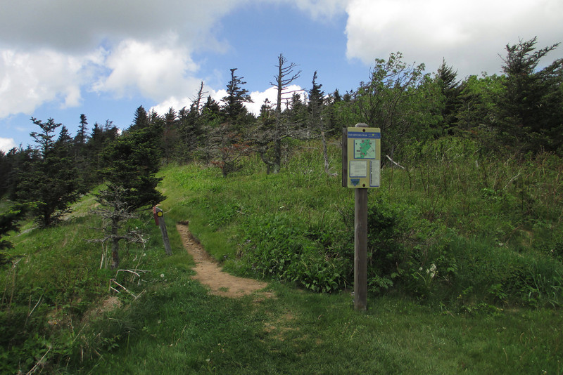 Old Mitchell Trail (6,200')