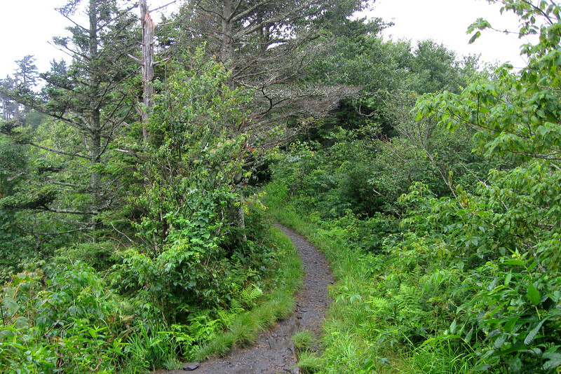 Appalachian Trail - 5,650'