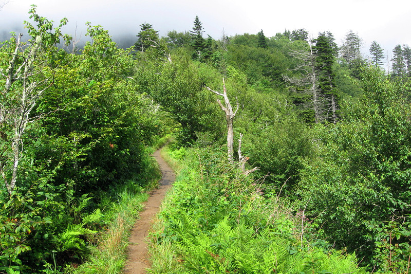 Appalachian Trail - 5,520'