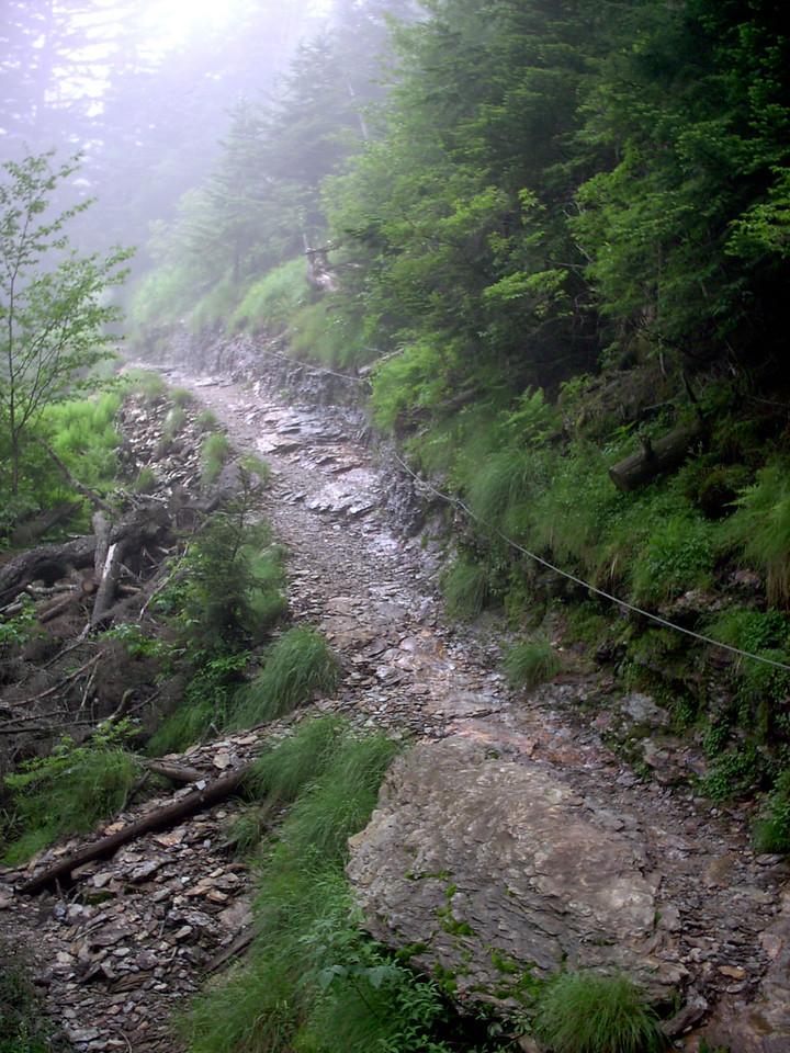 Alum Cave Trail - 6150'