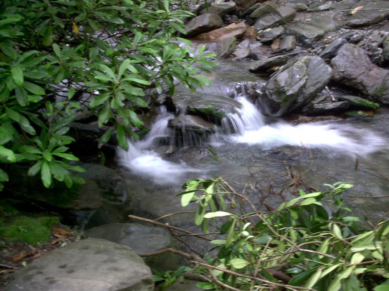 Alum Cave Trail - 3900'