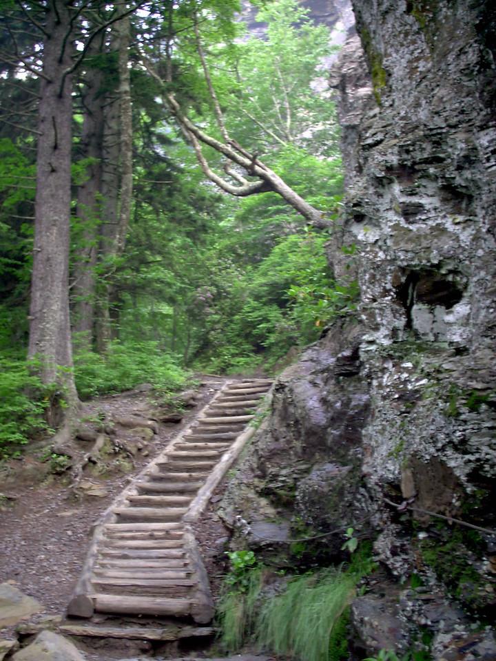 Alum Cave Trail - 5100'