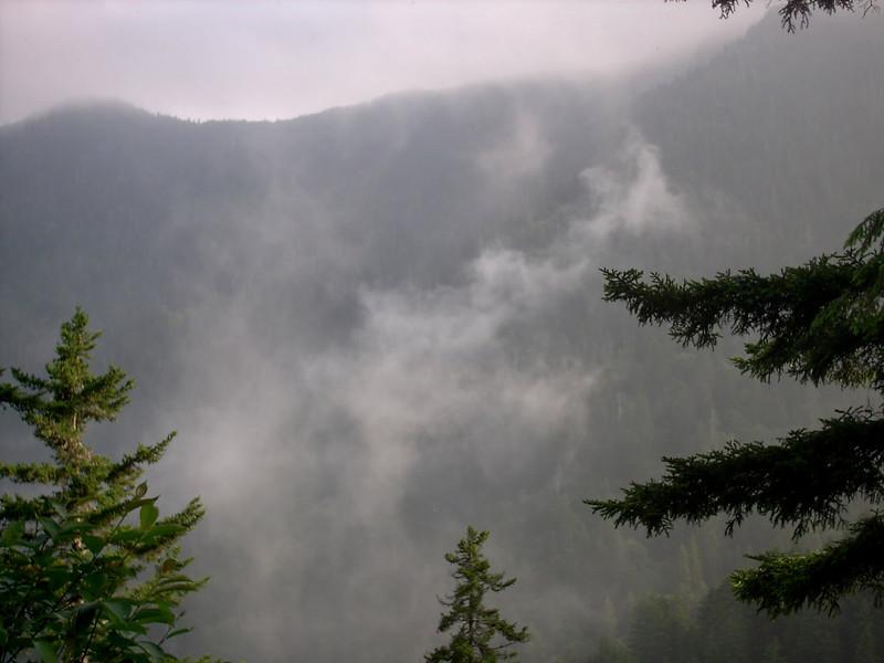 Alum Cave Trail - 5200'