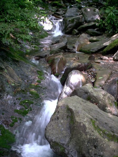Alum Cave Trail - 4050'