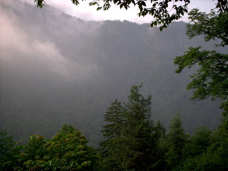 Alum Cave Trail - 4600'