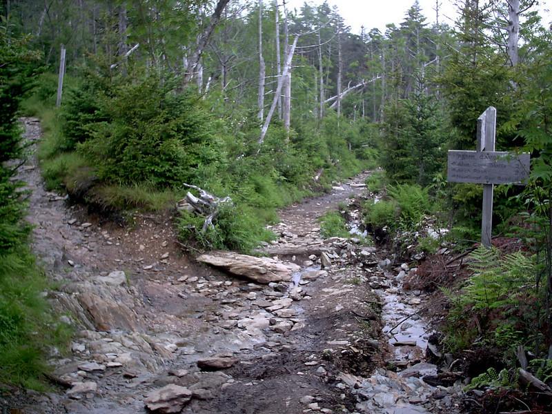 Alum Cave Trail - 6300'