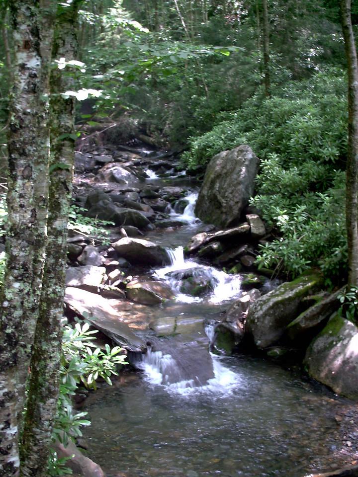 Alum Cave Trail - 3950'